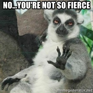 Not Today Lemur - no...you're not so fierce