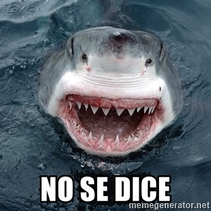 Insanity Shark - no se dice