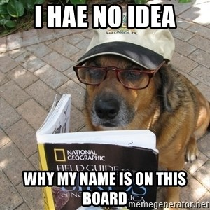 Dog Studying - I hae no idea why my name is on this board