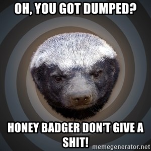 Fearless Honeybadger - Oh, you got dumped? honey badger don't give a shit!