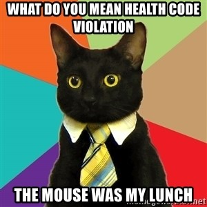 Business Cat - what do you mean health code violation the mouse was my lunch