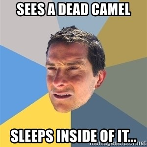 Bear Grylls - sees a dead camel sleeps inside of it...