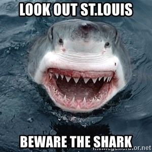 Insanity Shark - look out St.louis Beware the shark