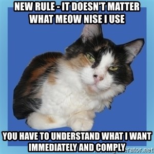 Sees It All Cat - new rule - It doesn't matter what meow nise I use You have to understand what I want immediately and comply