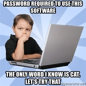 Programmers son - password required to use this software the only word i know is cat. let's try that
