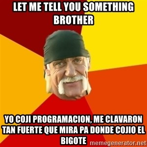 Hulk Hogan - Let me tell you something brother yo coji programacion, me clavaron tan fuerte que mira pa donde cojio el bigote