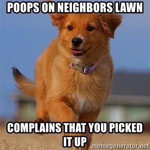 Ridiculously Photogenic Puppy - poops on neighbors lawn Complains that you picked it up
