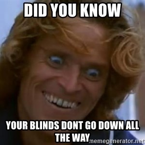 Willem Dafoe - did you know your blinds dont go down all the way