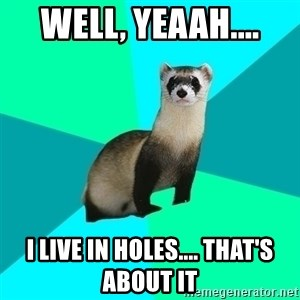 Obvious Question Ferret - well, yeaah.... i live in holes.... that's about it