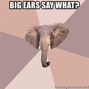 fat Elephant - Big ears say what?