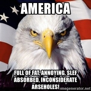 American Pride Eagle - america full of fat, annoying, slef absorbed, inconsiderate arseholes!