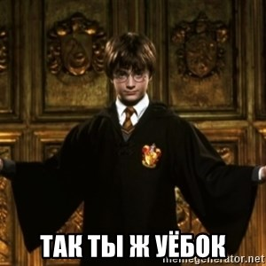 Harry Potter Come At Me Bro - Так ты ж уёбок