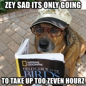 Dog Studying - zey sad its only going to take up too zeven hourz