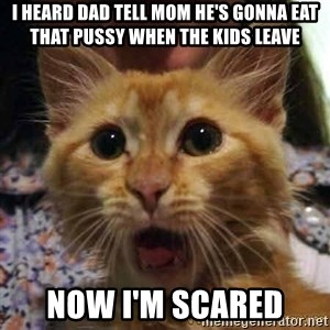 Crazy cat - i heard dad tell mom he's gonna eat that pussy when the kids leave now i'm scared