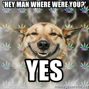 Stoner Dog - 'Hey man where were you?' Yes
