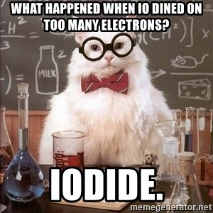 Chemistry Cat - what happened when io dined on too many electrons? iodide.