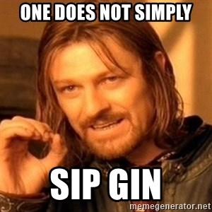 One Does Not Simply - one does not simply sip gin