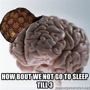 Scumbag Brain - how bout we not go to sleep till 3