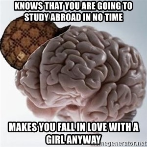 Scumbag Brain - knows that you are going to study abroad in no time makes you fall in love with a girl anyway