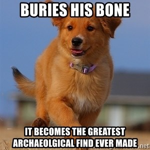 Ridiculously Photogenic Puppy - buries his bone it becomes the greatest archaeolgical find ever made