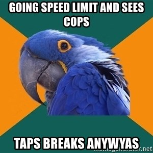 Paranoid Parrot - going speed limit and sees cops taps breaks anywyas