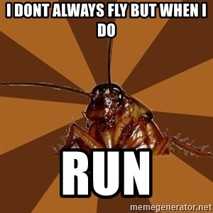 Eat The Cockroach - i dont always fly but when i do run