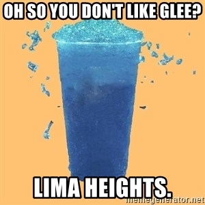 Gleek - Oh so you don't like glee? Lima heights.