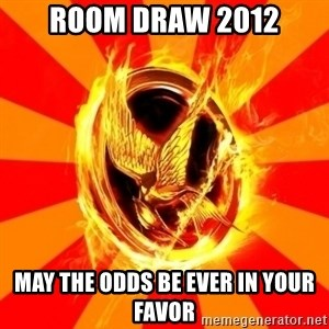 Typical fan of the hunger games - Room draw 2012 May the odds be ever in your favor