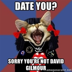 Rock fangirl kitty - date you? sorry you're not david gilmour