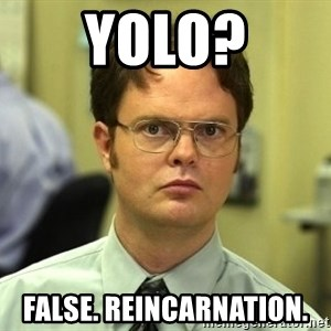 Dwight Schrute - YOLO? false. Reincarnation.