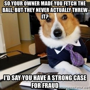 Dog Lawyer - so your owner made you fetch the ball, but they never actually threw it? i'd say you have a strong case for fraud