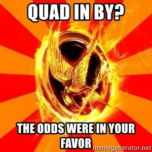 Typical fan of the hunger games - quad in By? the odds were in your favor