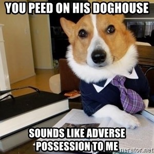 Dog Lawyer - You peed on his doghouse sounds like adverse possession to me