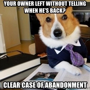 Dog Lawyer - YOUR OWNER LEFT WITHOUT TELLING WHEN HE'S BACK? CLEAR CASE OF ABaNDONMENT
