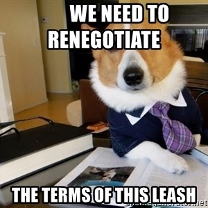 Dog Lawyer -         we need to renegotiate         the terms of this leash