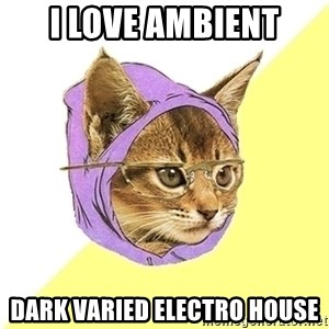 Hipster Kitty - i love ambient dark varied electro house