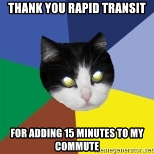 Winnipeg Cat - thank you rapid transit for adding 15 minutes to my commute