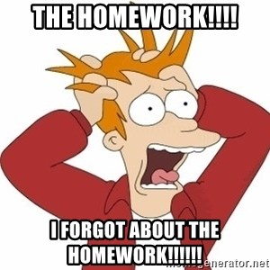 Fry Panic - the homework!!!! i forgot about the homework!!!!!!