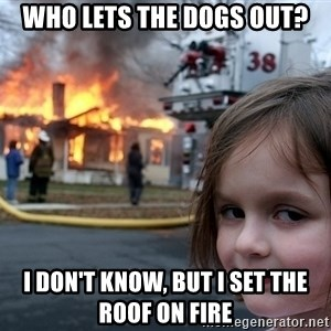 Disaster Girl - Who lets the dogs out? i don't know, but i set the roof on fire