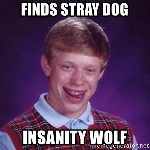 Bad Luck Brian - finds stray dog insanity wolf