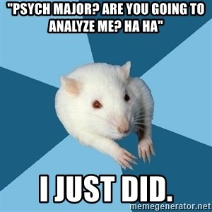 "Psychology Major Rat - ""psych major? are you going to analyze me? ha ha"" i just did."
