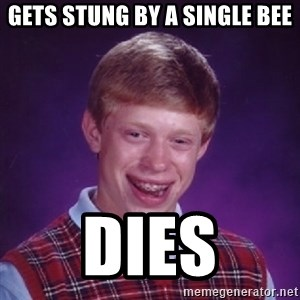Bad Luck Brian - gets stung by a single bee dies