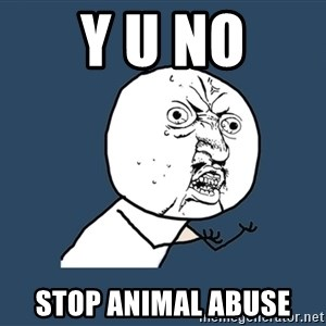 Y U No - Y u No stop animal abuse