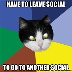 Winnipeg Cat - HAVE TO LEAVE SOCIAL TO GO TO ANOTHER SOCIAL