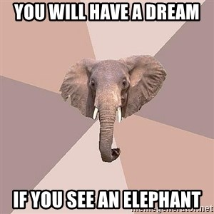 fat Elephant - You will have a dream if you see an elephant