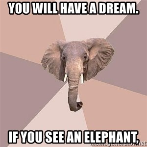 fat Elephant - you will have a dream. if you see an elephant,