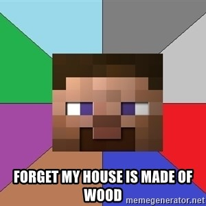 Minecraft-user - forget my house is made of wood