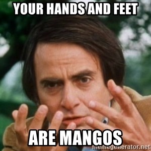 Carl Sagan - Your hands and feet are mangos