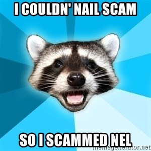 Lame Pun Coon - I couldn' nail scam So I scammed Nel