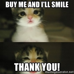 Adorable Kitten - BUy me and I'll smile thank you!